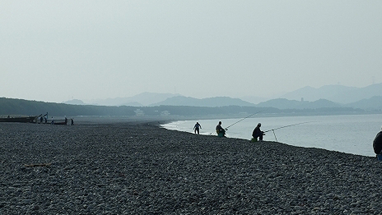 日高川河口に広がる煙樹が浜