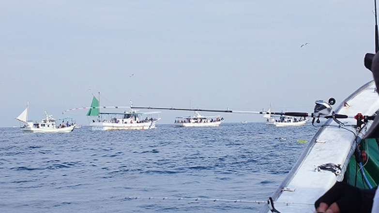 紀淡海峡でのタチウオ船団