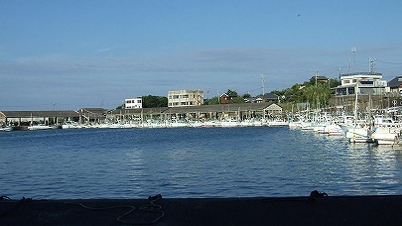 南部堺漁港の様子