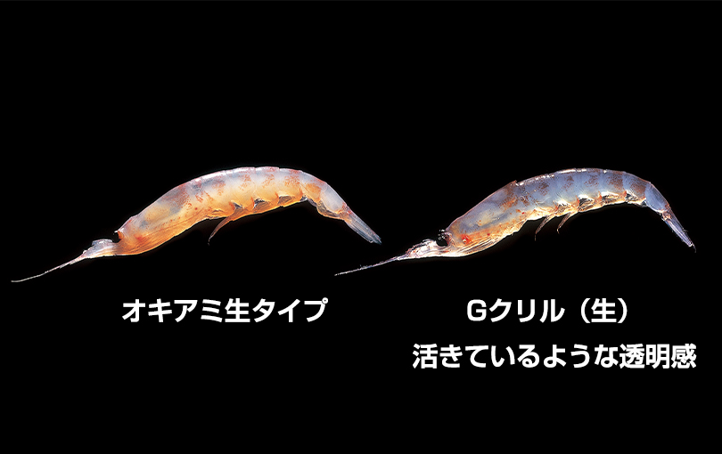 g_krill01